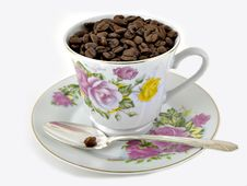 Free Coffee Beans & Cup Royalty Free Stock Photography - 1689807
