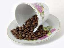 Free Coffee Cup & Beans Royalty Free Stock Photos - 1689808