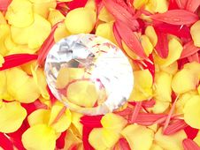 Diamond And Flower Petals Stock Image