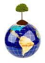 Free Globe And Tree Royalty Free Stock Photos - 16804698
