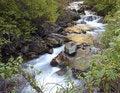 Free Mountain Stream Stock Photo - 16805060