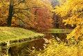 Free Autumn Wood Royalty Free Stock Image - 16808026