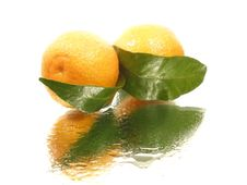 Free Tangerine With Leaves Stock Image - 16800511
