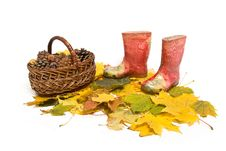 Free Basket And Rubber Boots Royalty Free Stock Images - 16801009