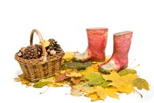 Free Basket And Rubber Boots Stock Image - 16801061