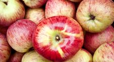 Free Apple Background Royalty Free Stock Image - 16804186