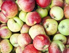 Free Fresh Apples Background Stock Photos - 16804783