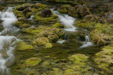 Free Mossy Stream Royalty Free Stock Photo - 16804865