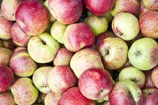 Free Apples Royalty Free Stock Photo - 16805145