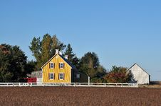 Yellow House In Farm  And Soy Beans Field Stock Image