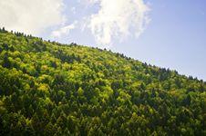 Free Natural Landscape Stock Photos - 16805423