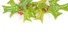Free Christmas Framework With Holly Berry Royalty Free Stock Images - 16805729