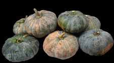 Free Group Of Pumpkin Royalty Free Stock Photo - 16806125
