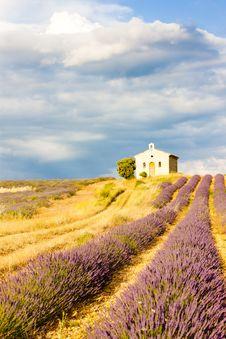 Free Provence, France Stock Photo - 16806440