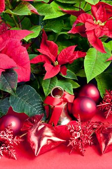 Free Christmas Still Life Royalty Free Stock Photography - 16806537