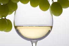 Free White Wine Royalty Free Stock Photos - 16806808