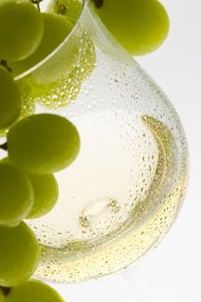 Free White Wine Stock Images - 16806814
