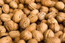 Free Walnuts Stock Images - 16807354