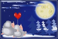 Free Hedgehogs Looks On The Moon. Royalty Free Stock Image - 16809206