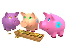 Pig A Coin Box Royalty Free Stock Image