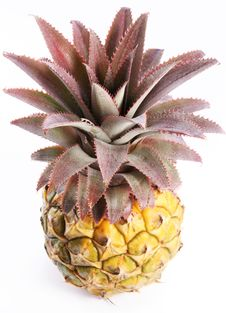 Ripe Pineapple. View From Top. Stock Photography