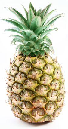 Free Large Ripe Pineapple. Stock Photography - 16809642