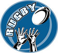Free Rugby Player Hands Catching Ball Royalty Free Stock Photography - 16817487