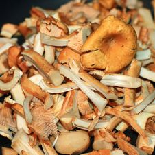 Free Preparation Of Chanterelles Stock Images - 16811064