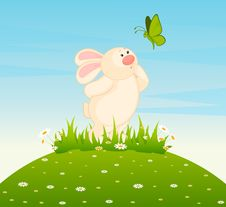 Free Little Toy Bunny With Butterfly Royalty Free Stock Photography - 16812937