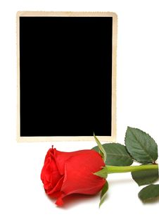 Free Old Photo And Red Rose Stock Photos - 16813073