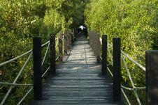 Free Wooden Bridge Stock Image - 16813101