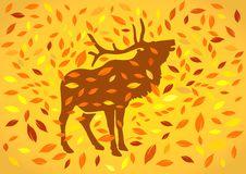 Free Deer At Autumnal Stock Image - 16813191
