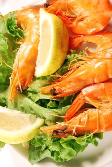 Free Appetizer Of Shrimp 006 Stock Photo - 16813580