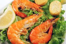 Free Appetizer Of Shrimp With Toasted 002 Bis Royalty Free Stock Image - 16813936