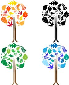 Free Leaves On The Tree Royalty Free Stock Image - 16814796