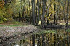 Free Romantic Park Stock Photo - 16817150