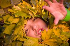 Free Woman Covered By Autumnal Leaves Royalty Free Stock Photography - 16817247