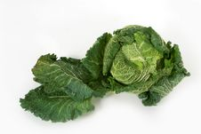 Free Savoy Cabbage Royalty Free Stock Images - 16817809