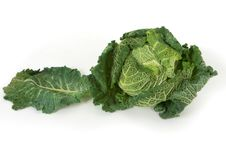 Free Savoy Cabbage Royalty Free Stock Photo - 16817835