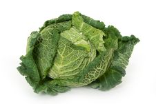 Free Savoy Cabbage Royalty Free Stock Photos - 16817908