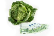 Free Savoy Cabbage And Euros Royalty Free Stock Photo - 16817975