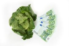 Free Savoy Cabbage And Euros Royalty Free Stock Images - 16818039