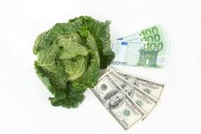Free Savoy Cabbage And Money Stock Image - 16818191