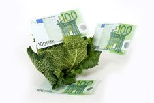 Free Savoy Cabbage And Money Stock Image - 16818391