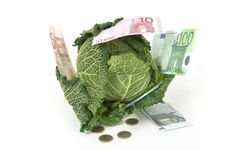 Free Savoy Cabbage And Money Royalty Free Stock Image - 16818446
