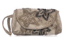Free Womens Silver Glittery Purse Royalty Free Stock Photo - 16819235