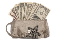 Free Silver Purse With American Dollars Royalty Free Stock Photos - 16819258