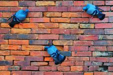 Free Brick And Pigeons Royalty Free Stock Images - 16819829