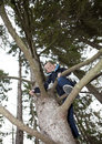 Free Young Boy Climbing A Tree Royalty Free Stock Image - 16823666