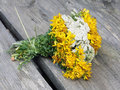 Free Bouquet From Wildflowers Stock Photography - 16829112